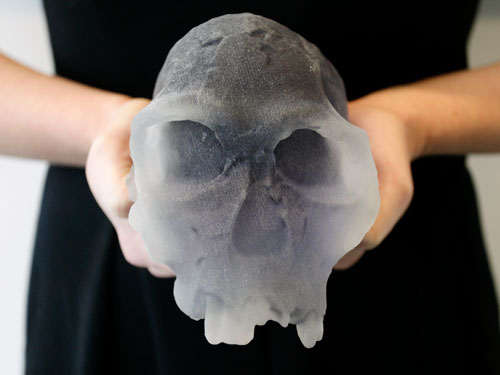 3d printed skull fossil