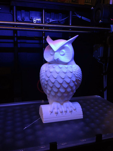 owl_display_small